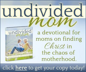 Undivided Mom